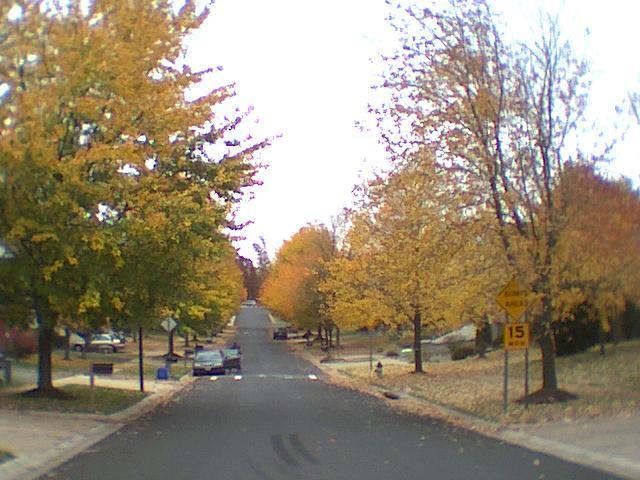 Hawkshead Terrace