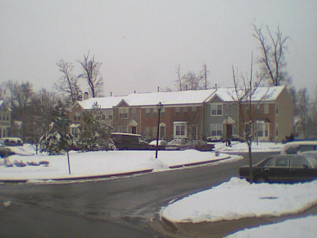 Deer Ridge During the Presidents' Day Storm