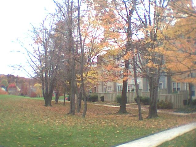 Tanglewood Courtyard
