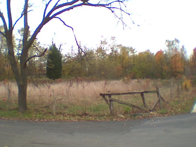 Vacant Lot on Musgrove Road